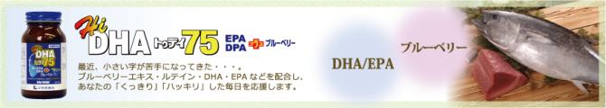 HiDHAトゥデイ75